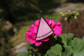 Růžový šperk černě zdobený - Tiffany šperky